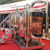 500L Microbrewery Ale/lager Red Copper Pub Brewery Equipment for Ireland Market