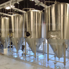 15HL Customizable Stainless Steel Dimple Jacket Conical Fermenter for Sale