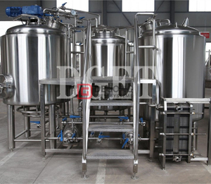300L/500L/700L/1000L turnkey commercial craft beer brewing equipment brewing plant for sale