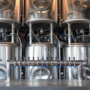 1000L Customzied Vertical Or Horizontal Brite Tank Stainless Steel Pressured Conical Double Wall Beer Serving Tank